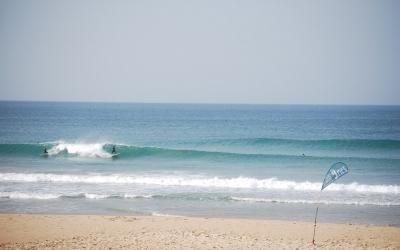 el palmar surf camp