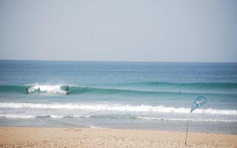 el palmar surf camp