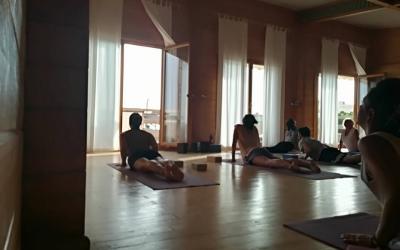 yoga camp el palmar