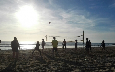 volley el palmar