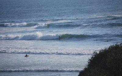 Surf en Amado
