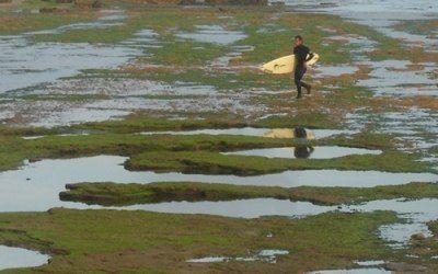 Surfista andando sobre las rocas